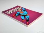 Superman Raccolta supplemento al n. 13 con 2 poster 3